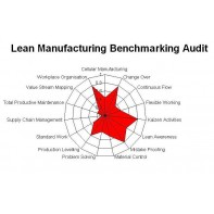 Lean Manufacturing - Benchmark Audit